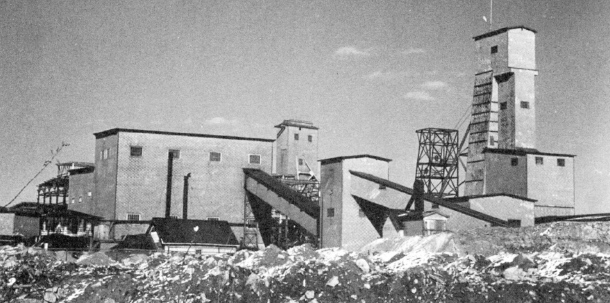 Producing well by the late twenties, the Sylvanite Mine stems from the early days of the gold rush. Shown here in the fifties. (Museum of Northern History)